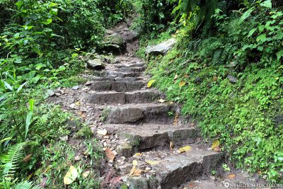 The trail back to Aguas Calientes