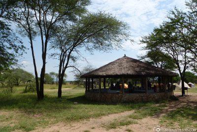 Das Camp Seronera