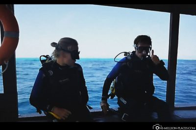 Ready to dive
