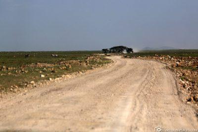 The way through the Serengeti National Park