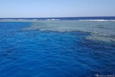 The dive site Shaab Marsa Alam