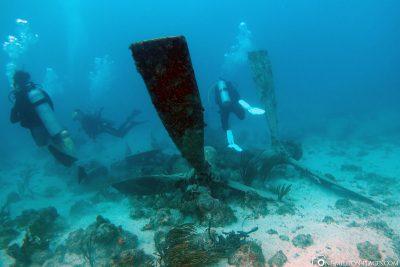 Plane wreckdiving in Aruba