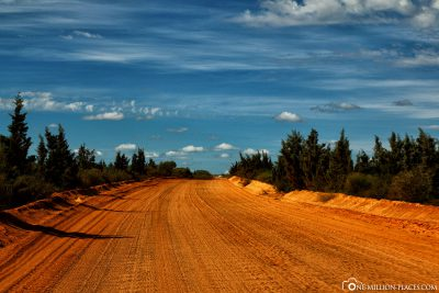 Our drive across the dusty gravel road