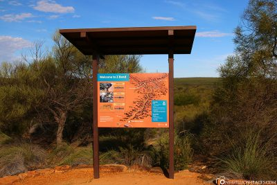 Info board at Z Bend Lookout