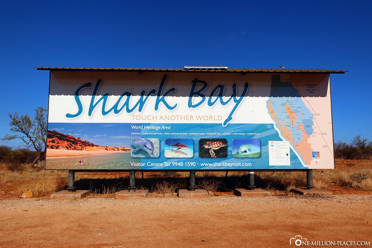 Shark Bay, Australia, State of Western Australia, On Your Own, Travelreport