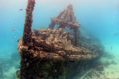 Wracktauchen auf Barbados