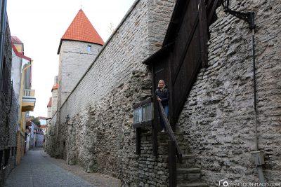 Die Stadtmauer um die Altstadt