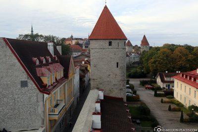 Der Ausblick vom Turm auf die Stadtmauer