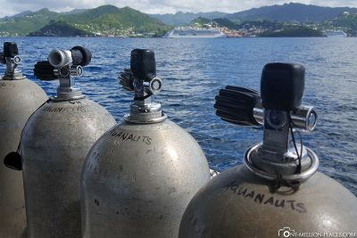Diving with the AIDA on Grenada
