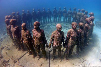 The human circle under water