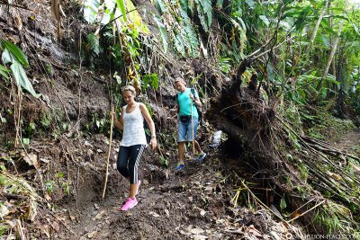 The way to the volcano La Soufriere
