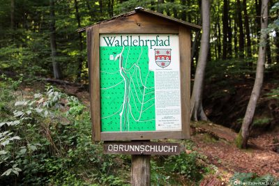 Obrunn Gorge Forest Trail