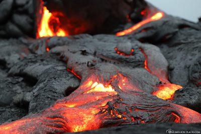 Lava auf Big Island