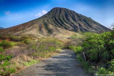 The way from the parking lot to Koko Crater