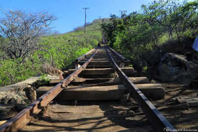 1048 steps to Koko Head Crater