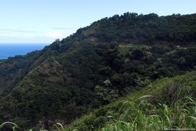 The great scenery in Westmaui