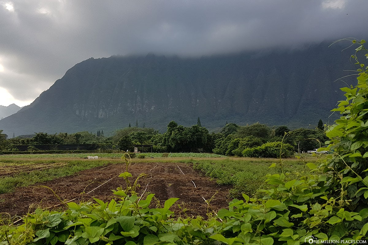 Ko'olau Mountains, Oahu Photography Tours, Oahu, Hawaii, USA, Fotospot, Reisebericht, Urlaub