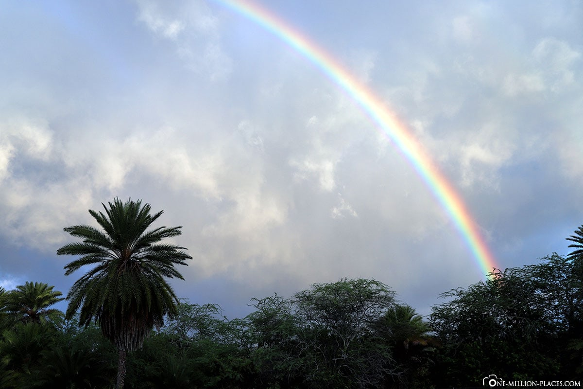Rainbow, Oahu Photography Tours, Oahu, Hawaii, USA, Photo spot, Travelreport, Vacation