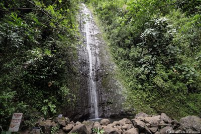 The Manoa Waterfall