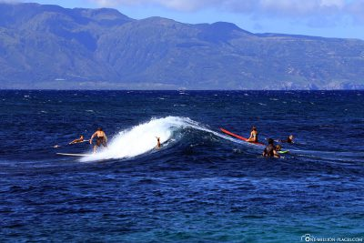 The surfers at Ho'okipa Beach Park