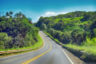 Highway 360 - The Road to Hana
