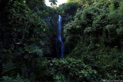 The Paihi Waterfalls