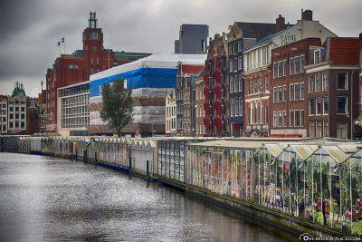 Der Blumenmarkt von Amsterdam