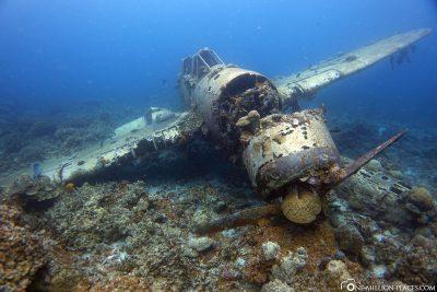 Wracktauchen in Palau