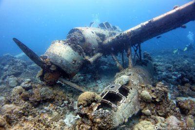 The plane wreck Jake Seaplane
