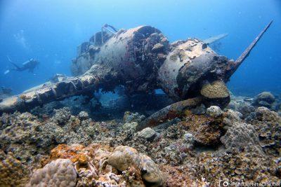 An aircraft wreck age in Palau