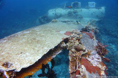 Das Flugzeugwrack Jake Seaplane