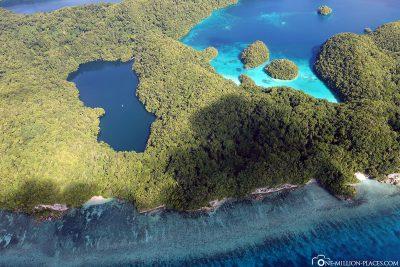 Der Quallensee in Palau