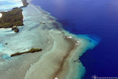 Das Riff an der Blue Corner