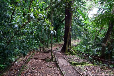 Der Weg entlang der alten Bahnstrecke