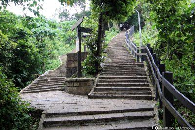 Die Treppen zum Elephant Mountain