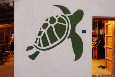 Alagadi Turtle Project in Zypern