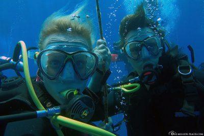Dive-Buddies