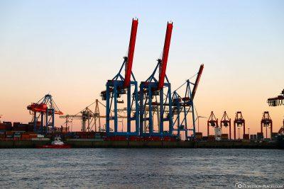 Hambuger Hafengiraffen