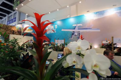 ITB Berlin - Travel country Fiji