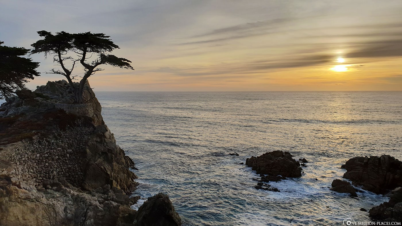 The Lone Cypress, Sundown, 17 Mile Drive, Fotospot, Monterey, Pebble Beach, Scenic Tour, Kalifornien, USA, Reisebericht