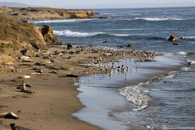 Die Küste am Vista Point