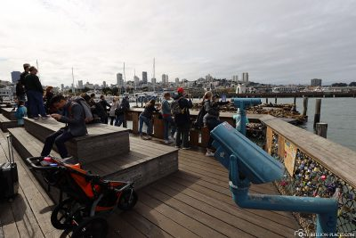 The observation deck for the sea lions