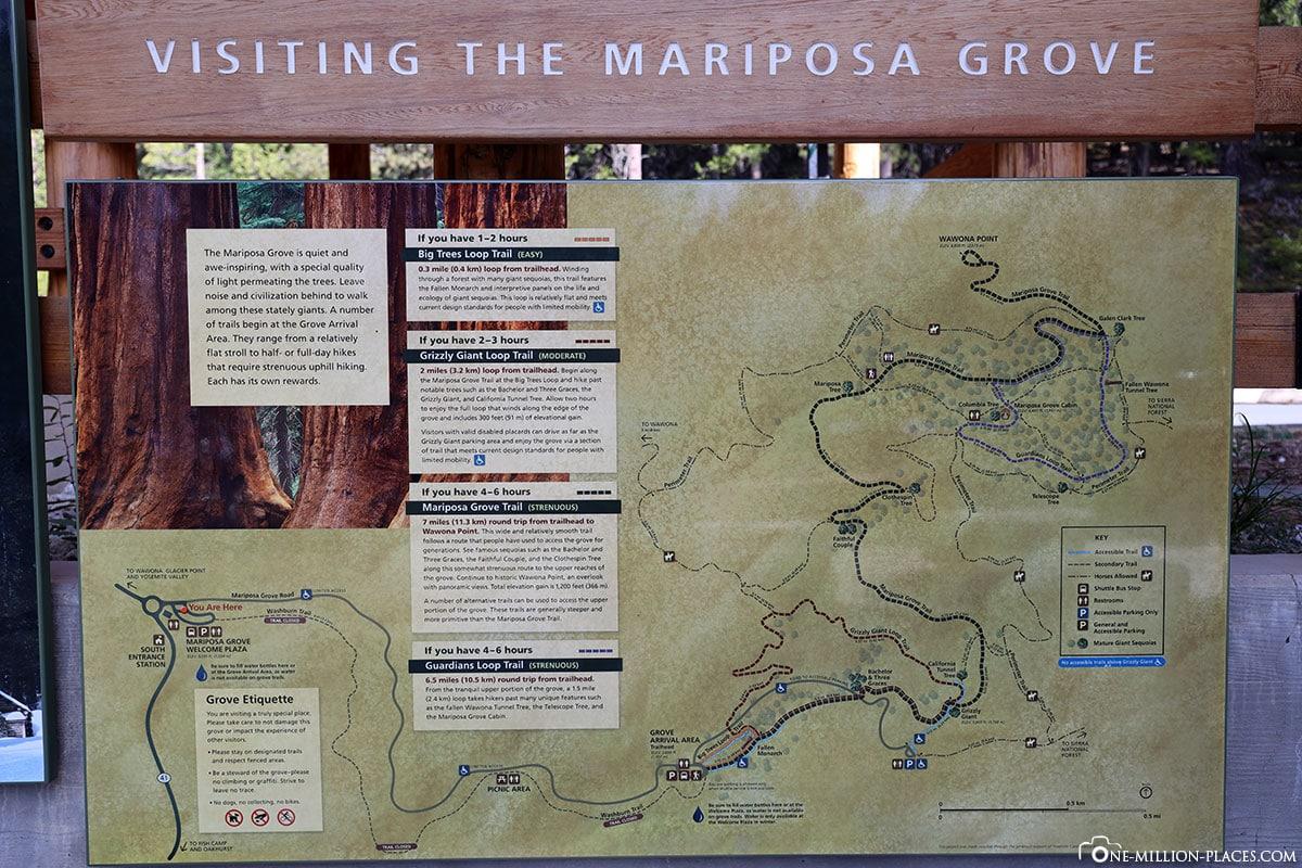 Map, Hiking Trails, Plan, Mariposa Grove, Yosemite, National Park, USA, California, Travel Report