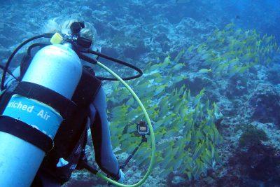 Sandra beim Unterwasser-Filmen