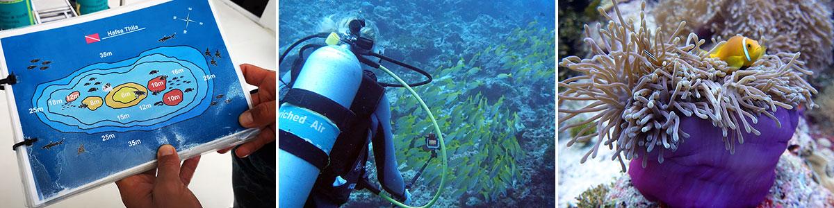 Robinson Malediven Tauchen Headerbild