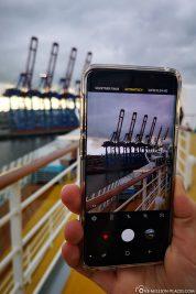 Die Hamburger Hafengiraffen