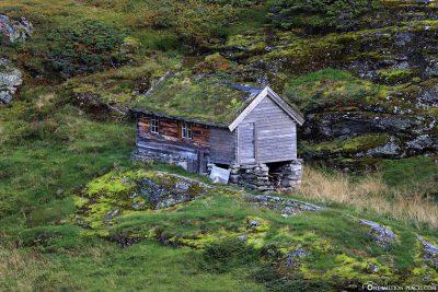 An abandoned farm