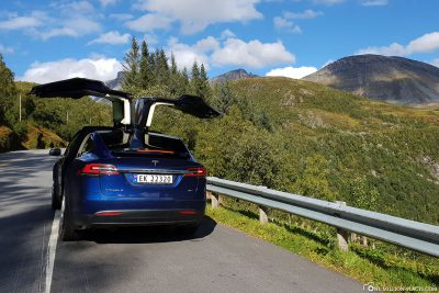 Our Tesla Taxi