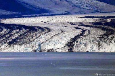 Die Eiszunge des Harvard Gletschers