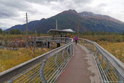 Die Aussichtsplattform für die Braunbären